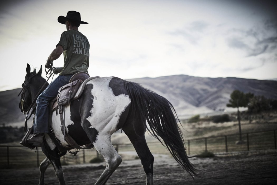A rancher riding his painted horse on the farm