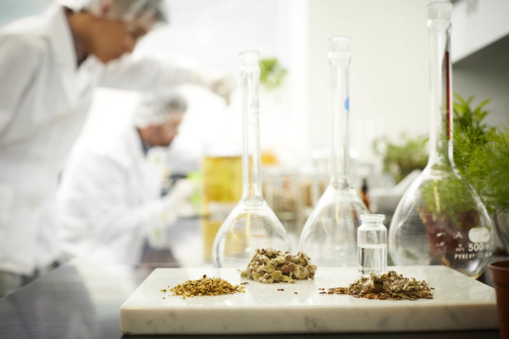 Two lab workers mixing substances with ingredients in front
