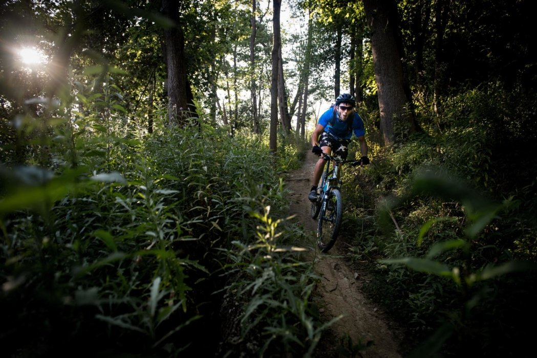 A man riding a bike in a forest