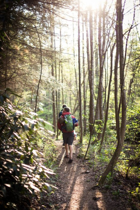 Two hikers moving through a wood carrying camping gear