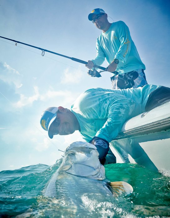 Two fisherman leaning over a boat pulling in a tarpon fish