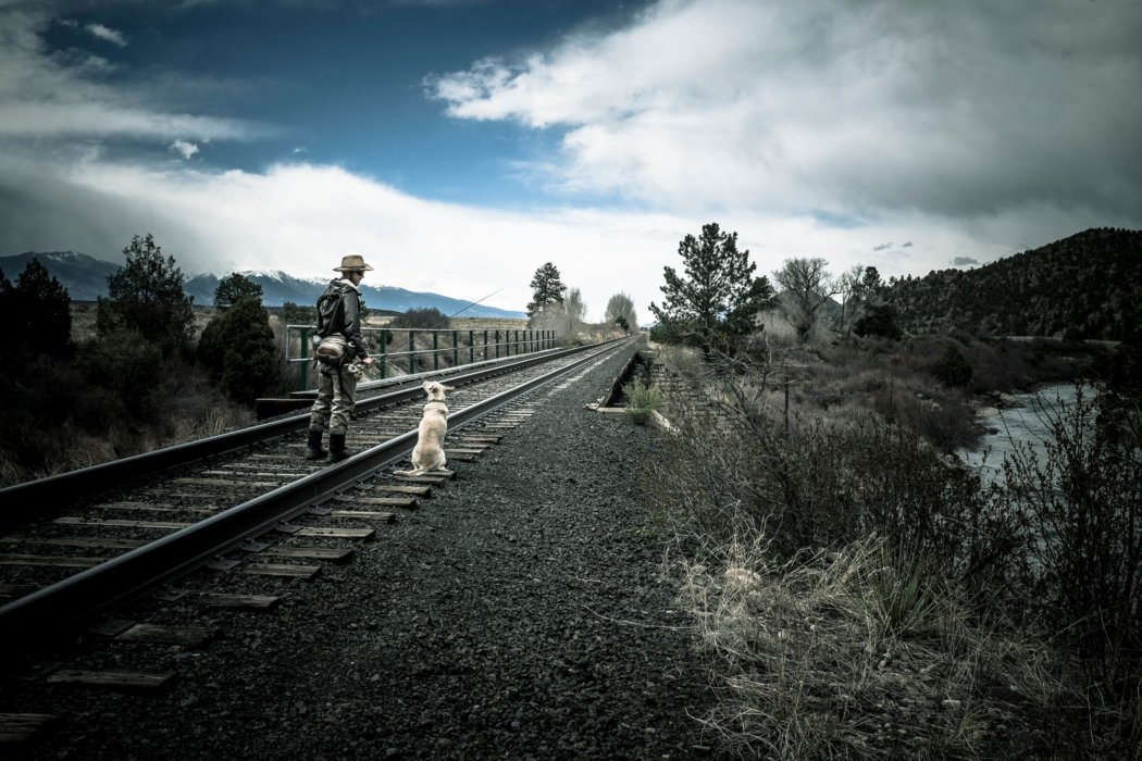 A fisherman and his dog walking on train tracks near a river
