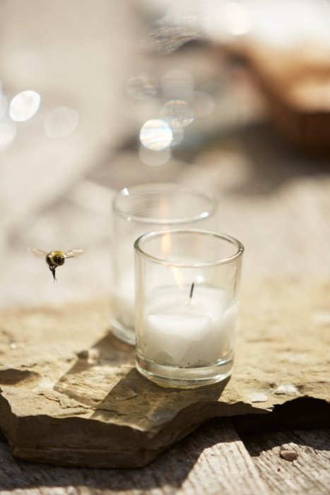 up close clear white candle with a yellow bumblebee on stone