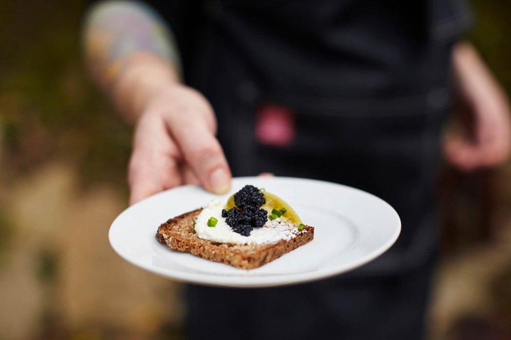 fresh food style with fresh blackberries on bread