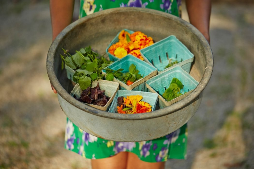 Girl in a green dressing holding a bowl of different kinds of green and orange food