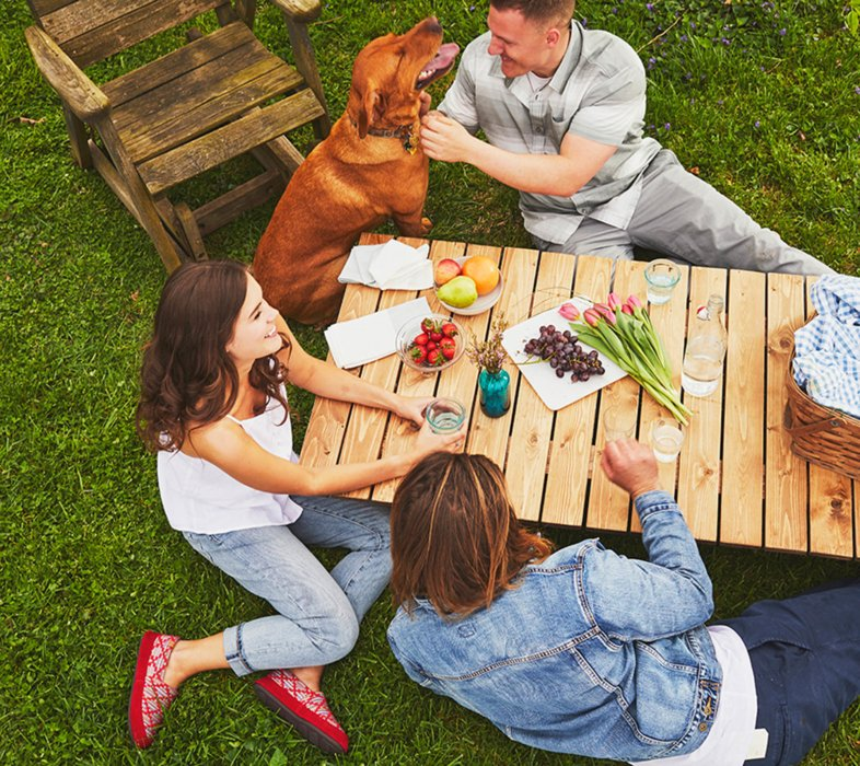group of three laying on the grass relaxing with fresh fruits and man is petting the brown dog