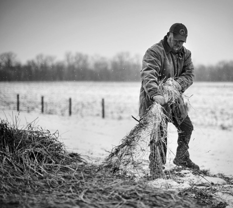 A man working on hay and straw in the middle of winter on a farm - lifestyle photography