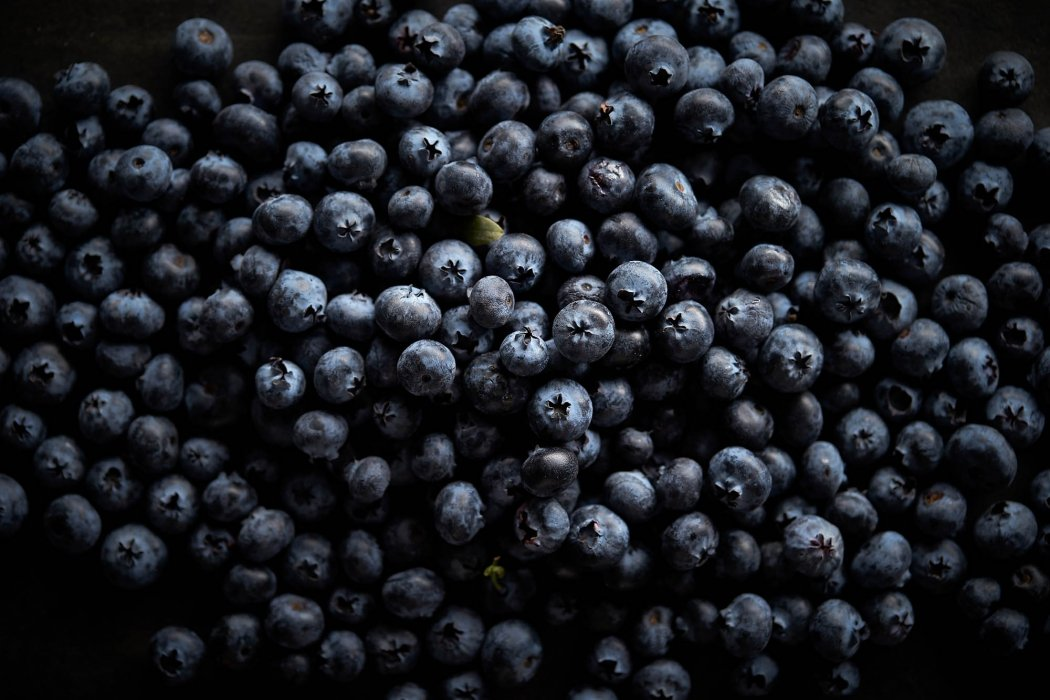 A sea of blueberries raw and fresh - food photography